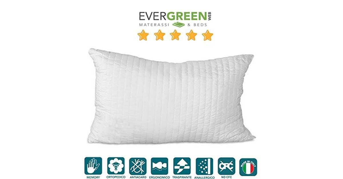 Evergreenweb-Kit-Rete-2